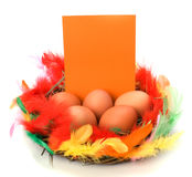 Easter decor with card Royalty Free Stock Photo