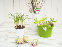 Easter decor with crocus, eggs and easter tree. Royalty Free Stock Images