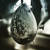 Easter decor egg. Artistic look in duotone style. Royalty Free Stock Photos