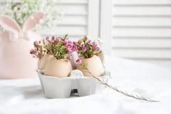 Easter decor - Flowers in eggshells. Easter decor - fresh beautiful Flowers in eggshells Royalty Free Stock Images