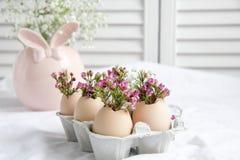 Easter decor - Flowers in eggshells. Easter decor - fresh beautiful Flowers in eggshells royalty free stock image