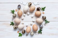 Easter decoration – pattern of natural chicken and quail eggs. Top view, close up, flat lay on white wooden background.  royalty free stock photography