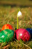 Easter decoration. The image shows a lonely spring snowflake Stock Photo
