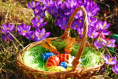 Free Easter Decoration Royalty Free Stock Images - 17697559