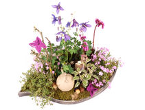 Easter decoration. Easter flower arrangement with chicken Royalty Free Stock Photo