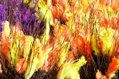 Easter decoration. Of twigs and colored feathers Royalty Free Stock Photos