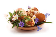Easter decoration. Hand painted easter egg and spring flowers composition stock photos