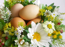 Easter decoration. Easter floral decoration with eggs royalty free stock photography