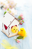 Easter decoration with apple blossom. Royalty Free Stock Images