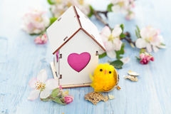 Easter decoration with apple blossom. Royalty Free Stock Image
