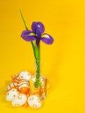 Easter decoration background Stock Image