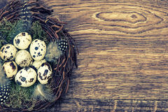 Easter decoration with birds eggs on wooden background Royalty Free Stock Photo