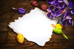 Easter decoration blank empty letter card vintage eggs crocus Royalty Free Stock Photos
