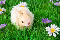 Easter decoration with bunny Stock Photo