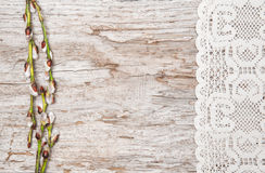 Easter decoration with catkins and lace cloth Stock Photos