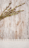 Easter decoration with catkins and linen fabric Stock Image
