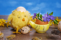 Easter decoration with chicken and eggs Royalty Free Stock Images