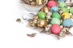 Easter decoration colorful eggs and birds feather Royalty Free Stock Images