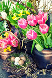 Easter decoration with colorful spring flowers. Tulips, snowdrop Royalty Free Stock Photography