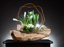 Easter decoration with crocus. Easter decoration idea with crocus flowers on table Stock Photos