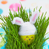 Easter decoration with cute egg in bunny hat Royalty Free Stock Photos