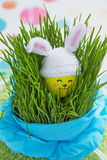 Easter decoration with cute egg in bunny hat Royalty Free Stock Images