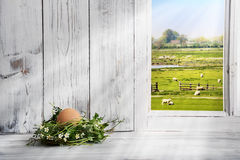 Easter decoration, Easter nest with brown egg Royalty Free Stock Image