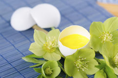 Easter decoration with egg shell hellebore flower and pollen. On a blue pad Stock Photo