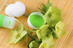 Easter decoration with egg shells green tempera paint and hellebore on a yellow pad. Easter decoration with egg shells green tempera paint and hellebore flowers royalty free stock photos