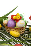 Easter decoration with eggs,chicken and tulips Royalty Free Stock Photography