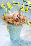 Easter decoration with eggs in a hay nest Royalty Free Stock Photography