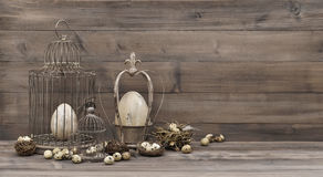 Easter decoration with eggs nest birdcage vintage Royalty Free Stock Photo