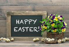 Easter decoration with eggs, pansy flowers, blackboard Stock Photos