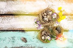 Easter decoration eggs pansy flowers Vintage toned. Easter decoration with eggs and pansy flowers on wooden background. Vintage style toned picture royalty free stock photography