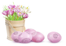 Easter decoration with eggs and pink crocuses Stock Image
