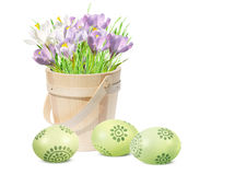 Easter decoration with eggs and pink crocuses Royalty Free Stock Image
