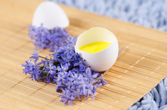 Easter decoration with eggs shell on a yellow pad. And blue spring flowers royalty free stock image