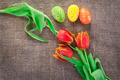 Easter decoration with eggs and tulips Royalty Free Stock Images