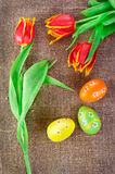 Easter decoration with eggs and tulips Stock Photography