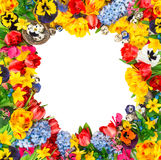 Easter decoration with eggs, tulips, narcissus, hyacinth. Flower Stock Photography