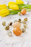 Easter decoration with eggs and yellow tulips Royalty Free Stock Images
