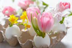 Easter decoration with flowers Royalty Free Stock Photography