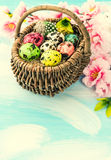 Easter decoration with flowers and eggs in basket Royalty Free Stock Photos
