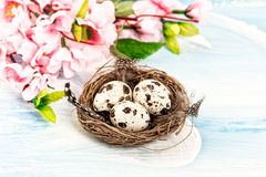 Easter decoration with flowers and eggs in nest Royalty Free Stock Image
