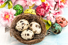 Easter decoration with flowers and eggs. Springtime Stock Photo