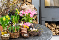Easter decoration flowers eggs. Tulips, snowdrops, narcissus Stock Image