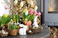 Easter decoration flowers eggs. Tulips, snowdrops, narcissus Stock Photography