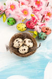 Easter decoration with flowers and quail eggs Royalty Free Stock Photos