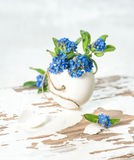 Easter decoration forget me not flowers egg. Easter decoration forget me not flowers in egg shell Royalty Free Stock Photography