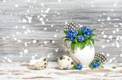 Easter decoration Forget me not flowers in egg shell Royalty Free Stock Images